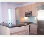 Furnished or unfurnished large one bedroom with 1.5 baths and balcony SHORT TERM OR ONE YEAR LEASE